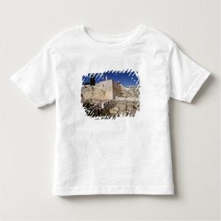 Temple Mount Toddler T-shirt