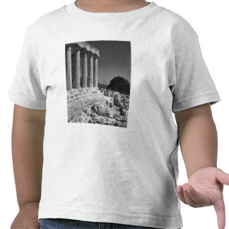 Temple of Aphaea Shirts