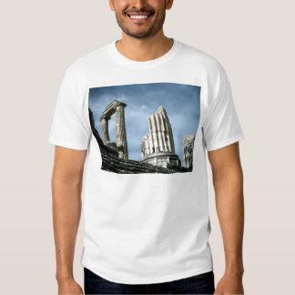 Temple Of Apollo, Turkey T-shirt