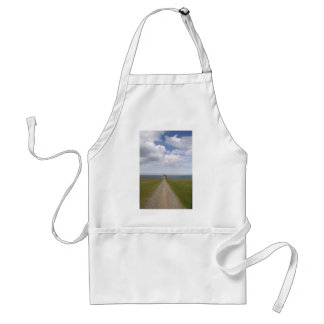 Temple of Learning Aprons