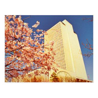 Temple Square, LDS Church Building. Postcard