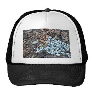 Temple Trash Hats