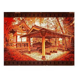 Temple Vivid Autumn Leaves Vintage Film Textured Postcards