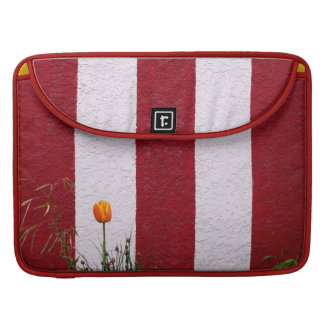 Temple Wall MacBook Pro Sleeves