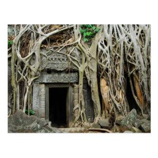 temples angkor postcard