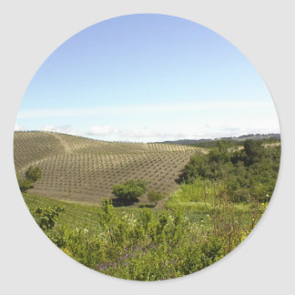 Templeton CA Wine Country Classic Round Sticker