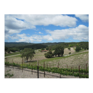 Templeton Wine Country at the End of May Postcard