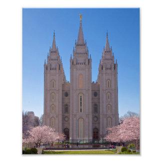 Templo de 8 de x 10 Salt Lake con los árboles en Fotografía