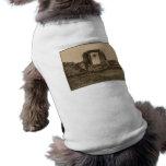 Templo de Amenophis, Egipto circa 1867 Camiseta De Mascota