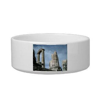 Templo de Apolo, Turquía Tazón Para Gato