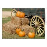 Temporada de otoño que muestra las calabazas felicitación