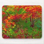 Temporada de otoño tapetes de ratón
