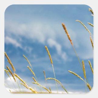 Temporal de lluvia de la hierba del cielo pegatina cuadradas personalizada