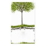 temporeros ambientales abstractos elegantes de la  tarjeta de visita