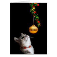 Tempted Kitty Cat Christmas Card at Zazzle