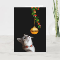 Tempted kitty cat Christmas Holiday Card