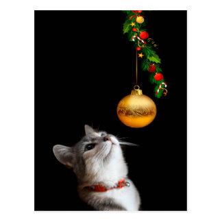 Tempted kitty cat Christmas Postcard