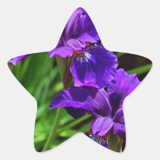 Tempting a Devil Star Sticker