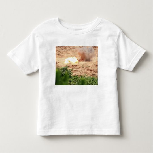 Ten half-pound blocks of TNT Toddler T-shirt