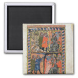 Ten Plagues of Egypt TtoB; the Plague of 2 Inch Square Magnet