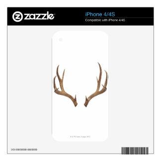Ten Point Deer Decals For iPhone 4