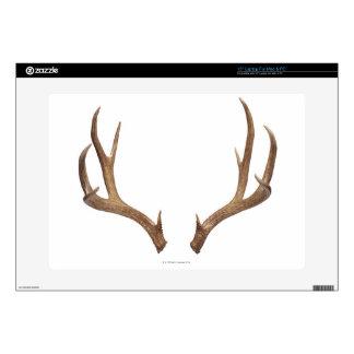 Ten Point Deer Decal For Laptop