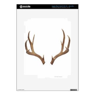 Ten Point Deer iPad 3 Skins