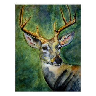 Ten Pointer (Deer) Fine Art Prints