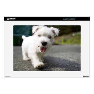 Ten week old female west highland terrier laptop skins
