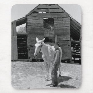 Tenant Farmer's Mule, 1930s Mouse Pad