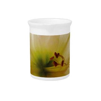 Tender bloom dream pitcher