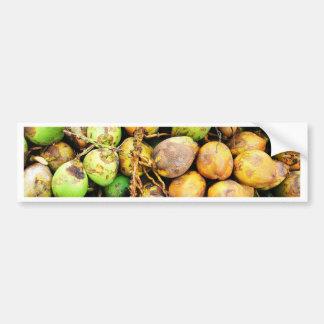 tender coconuts car bumper sticker