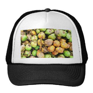 tender coconuts mesh hats
