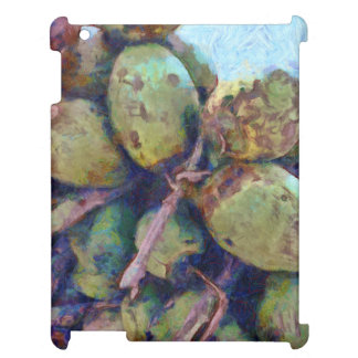 Tender coconuts in a pile cover for the iPad 2 3 4