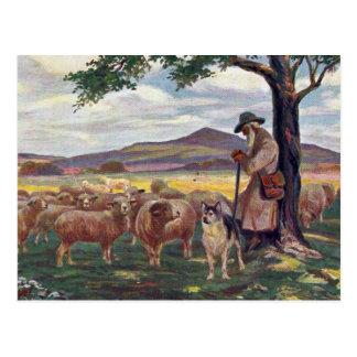 Tender el vintage de las ovejas postales