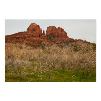 Tender Greens at Cathedral Rock Poster