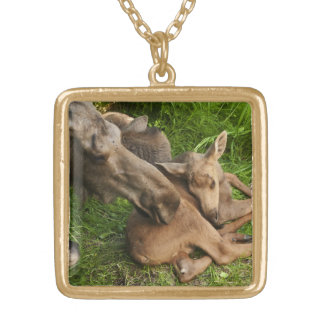 Tender Mother Moose Gold Plated Necklace