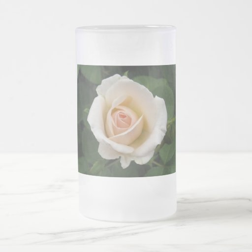 Tender Pale Orange Rose Frosted Mug