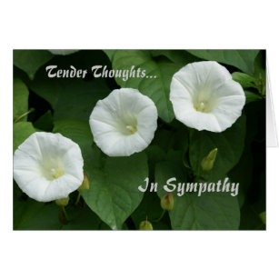 Tender thoughts cards greeting photo cards zazzle tender thoughts condolence card m4hsunfo
