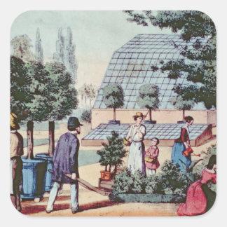 Tendiendo el jardín, c.1860 (grabado del color) pegatina cuadrada