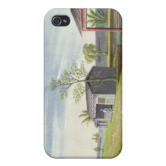 Tending tea plants (w/c on paper) cases for iPhone 4