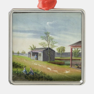 Tending tea plants (w/c on paper) metal ornament