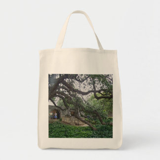 Tendril Tree at the Alamo, San Antonio, Texas Bag