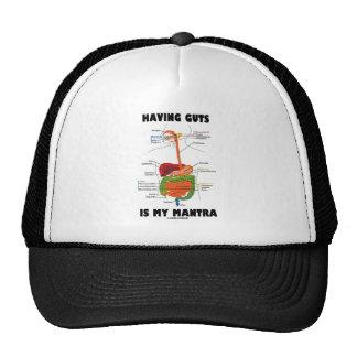 Tener tripa es mi mantra (el sistema digestivo) gorra