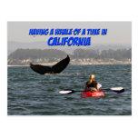 Tener una ballena de una postal de California del