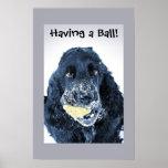 ¡Tener una bola! Poster
