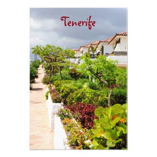 Tenerife, islas Canarias, España, Europa Fotografía