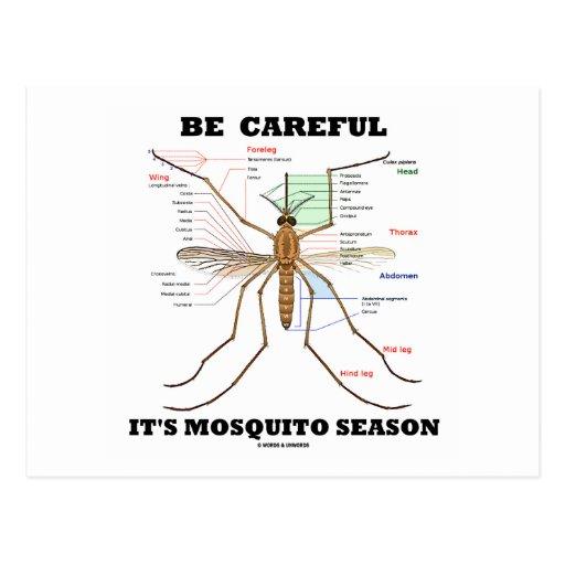 Tenga cuidado él es estación del mosquito (la anat postales