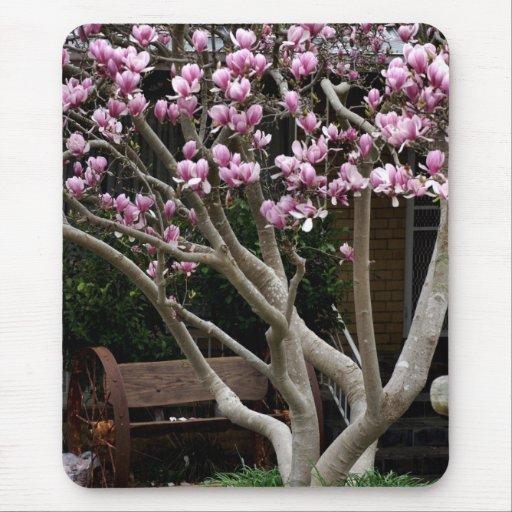 Tenga un asiento - árbol de la magnolia tapete de raton