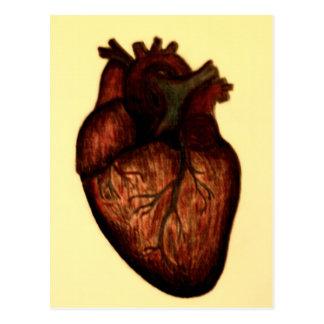 Tenga un corazón tarjeta postal